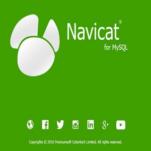 Navicat for PostgreSQL 11